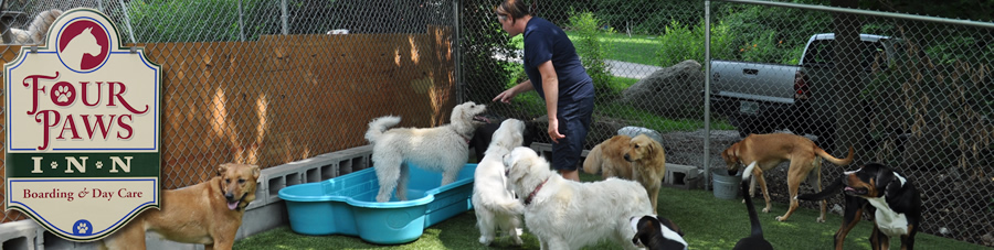 Kennels Laconia NH
